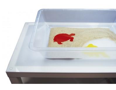 Transparent tray